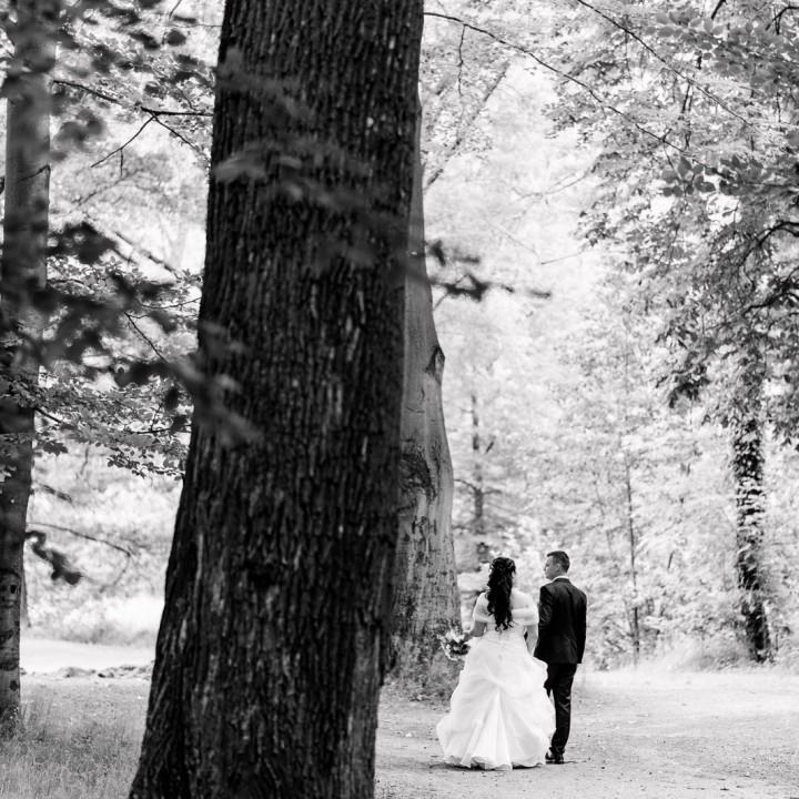 Kühle Sommersonnenwende Hochzeit auf Schloss Reinhardtsgrimma