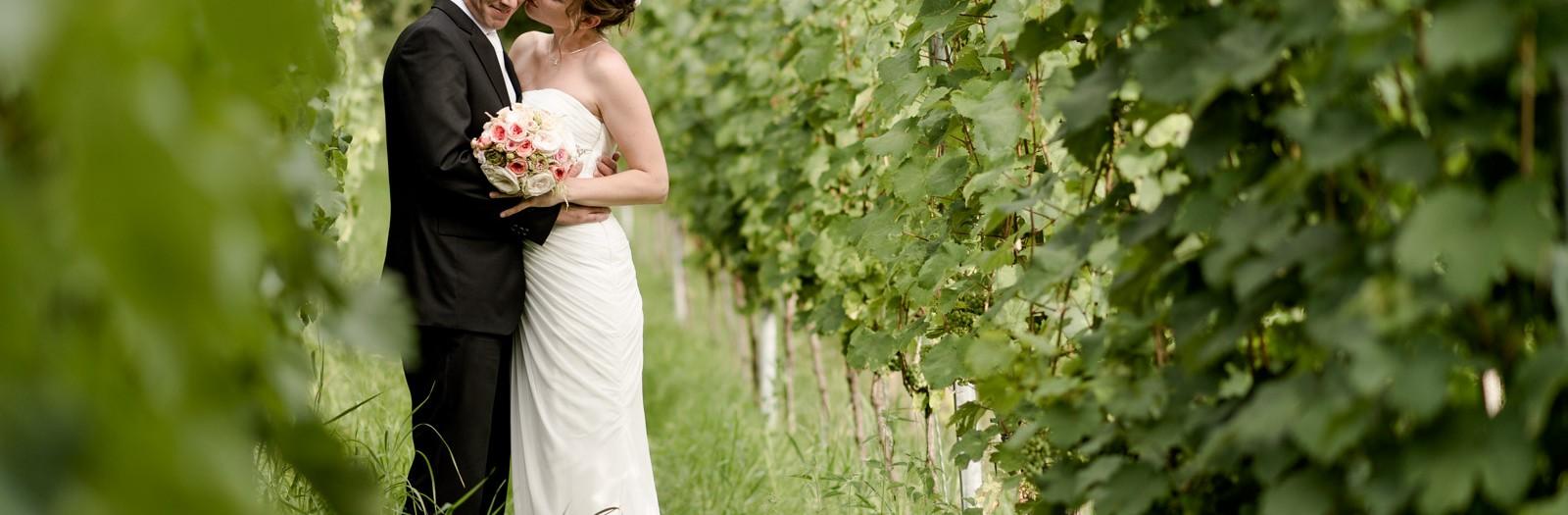 Sensationell schöne Hochzeit auf Schloss Albrechtsberg in Dresden